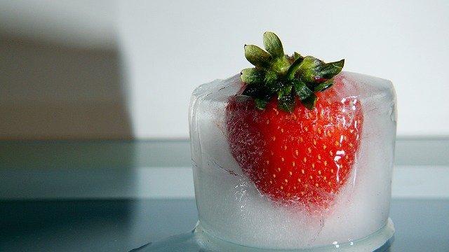 jahoda v ledu