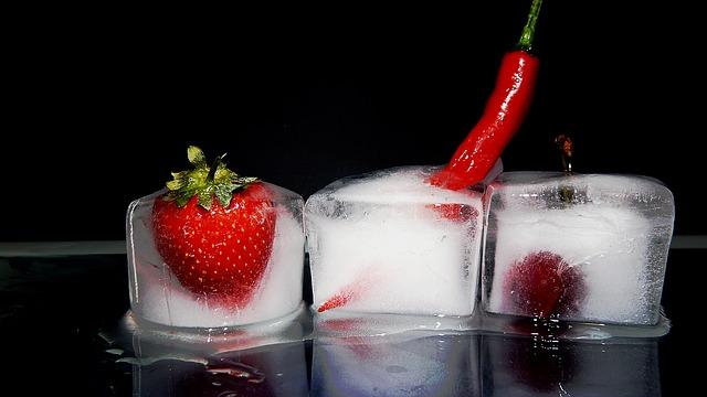 různé plody v ledu