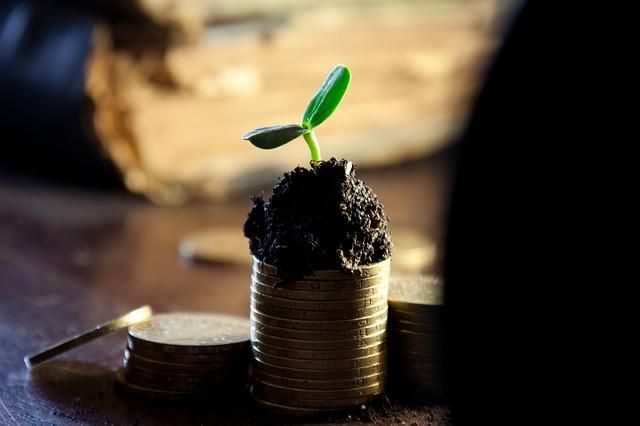 rostlinka na mincích