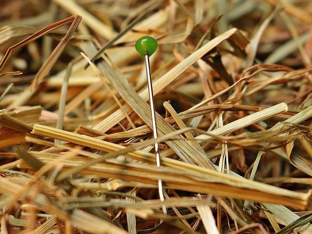 špendlík se zelenou hlavičkou hledání